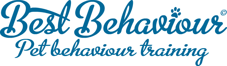 Best Behaviour logo